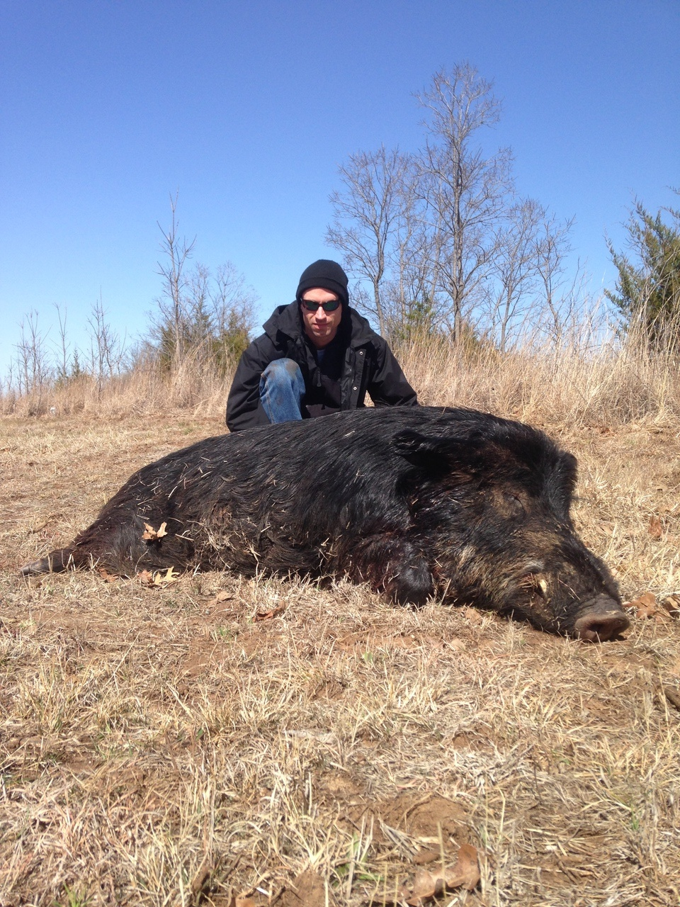 Feral Hog Hunting in Oklahoma