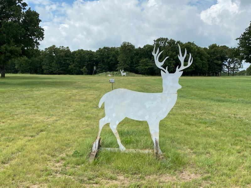 Whitetail Deer Cut Out Target
